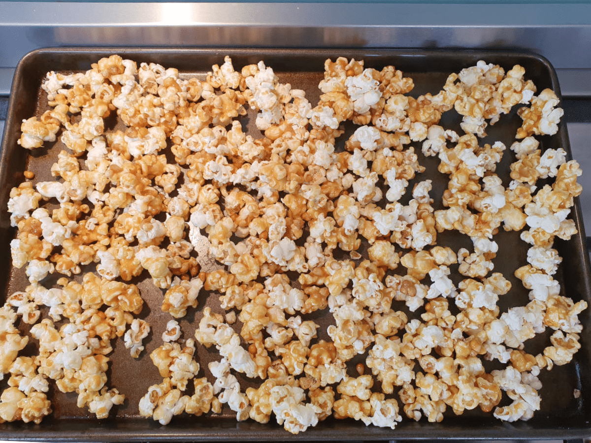 Popcorn on try ready to bake.