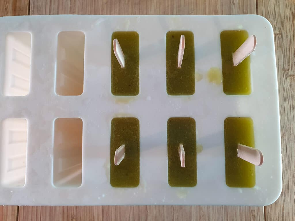 Top down view of molds showing kiwi fruit layer added on top, ready to freeze.