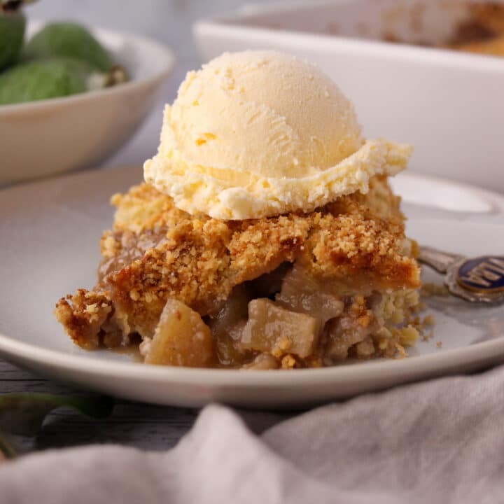 Close up side view of feijoa crumble on a plate with ice cream.