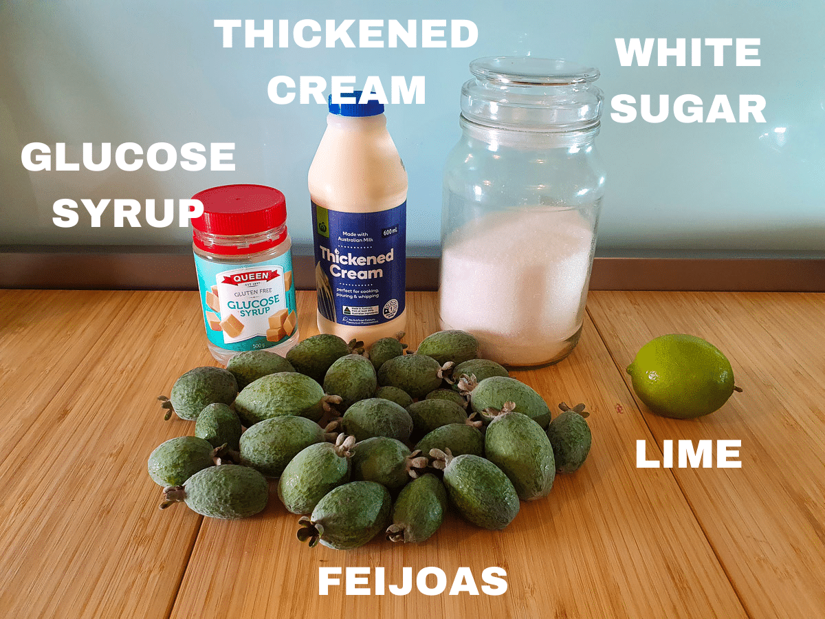Feijoa ice cream ingredients, feijoas, thickened cream, white sugar, lime, glucose syrup.