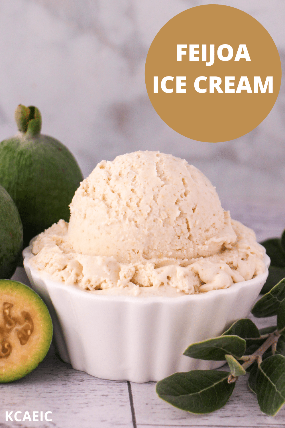 Scoop of feijoa ice cream with fresh feijoa, cut in half feijoa and sprig of feijoa leaves, with text overlay, feijoa ice cream, KCAEIC.